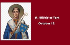 St. Wilfrid of York
